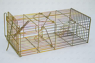 Arrest Trap Wire rat cage